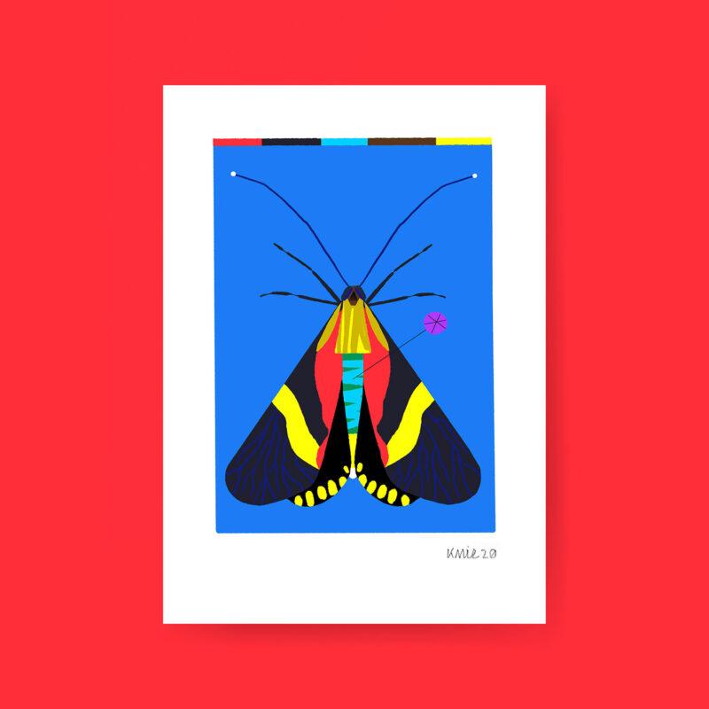 Dessin Mouche Illustration